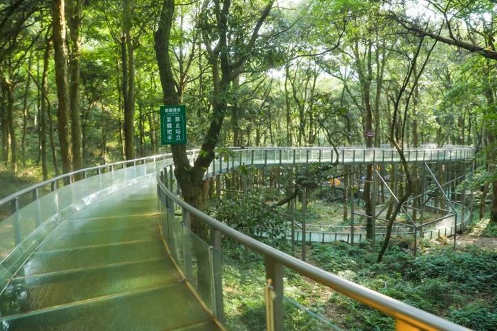 玻璃水滑道_游客喜爱的亲水项目